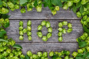The Word Hop Spelled With Hops.