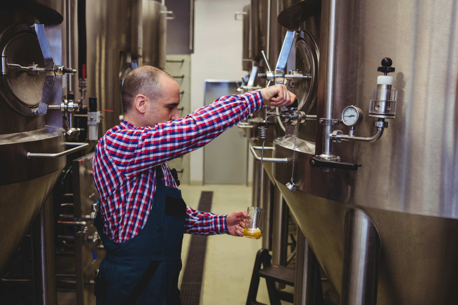Brewer Taking Sample in Commercial Brewery