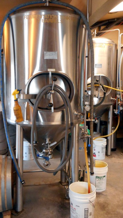Fermenters with buckets for airlocks.
